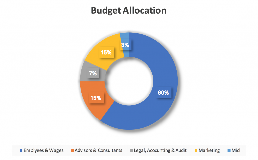 RefToken ICO Budget Allocation